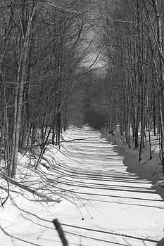 Elaine Mikkelstrup - Winter Stream - Tiny Marsh