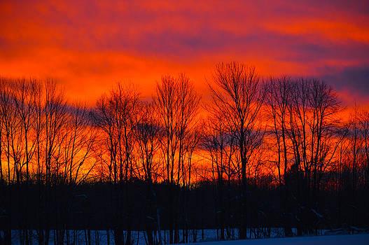 Winter Sunrise by Timothy Thornton
