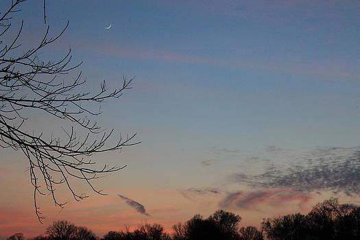 Winter Sunset by Alina Skye