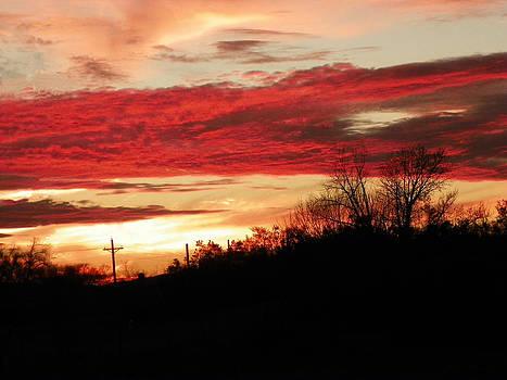 Winter Sunset by Margaret  Slaugh