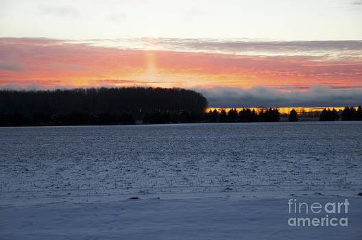 Elaine Mikkelstrup - Winter Sunset