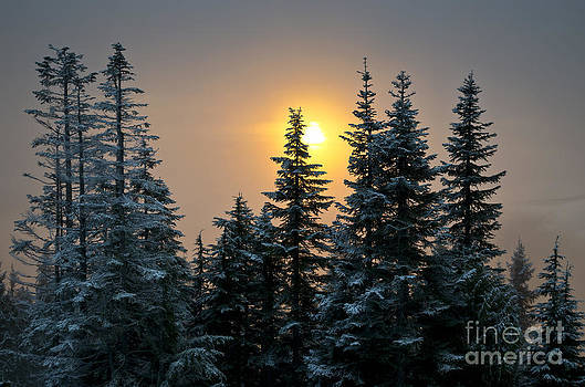 Winter Sunset from Grouse Mountain by Maria Janicki