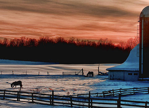 Winter Sunset in Rome NY by Pat Carosone