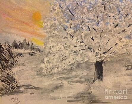 Winter sunset by Linea App