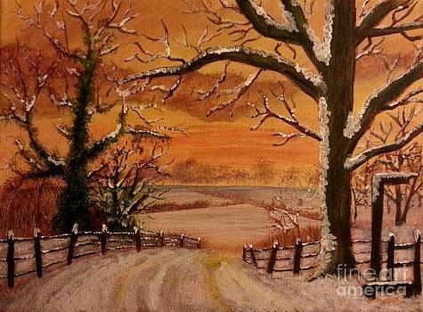 Winter Sunset  lll by Elizabeth Coats