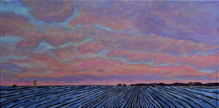 Winter Sunset on the Plains by Ann Laase Bailey