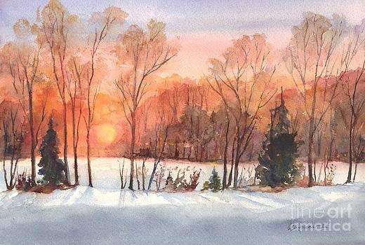 A Hedgerow Sunset by Carol Wisniewski