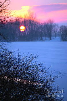 Sophie Vigneault - Winter Sunset