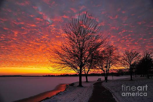 Terri Gostola - Winter Sunset
