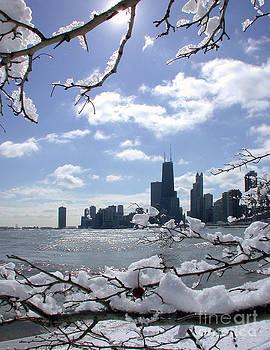 Winter Sunshine by Martin Konopacki