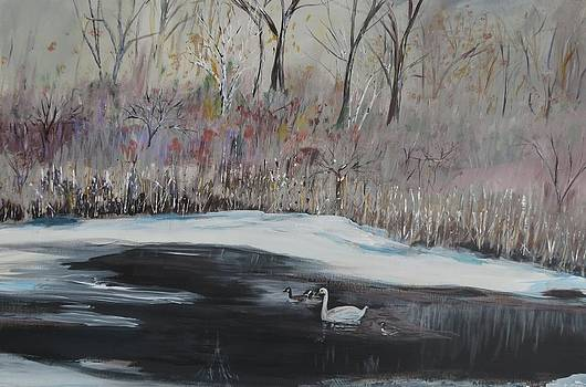 Winter Swan On River by Carolyn Speer