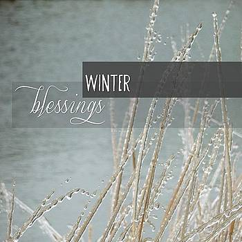 {winter by Traci Beeson