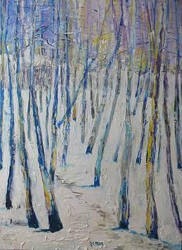 Winter Trail by Blanche Serban