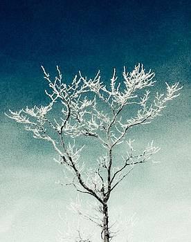 Winter Tree Series 4 by Melany Raubolt