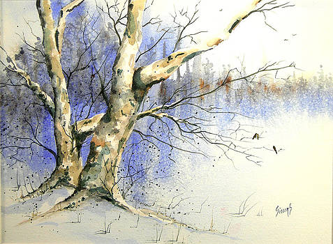 Sam Sidders - Winter Tree With Birds