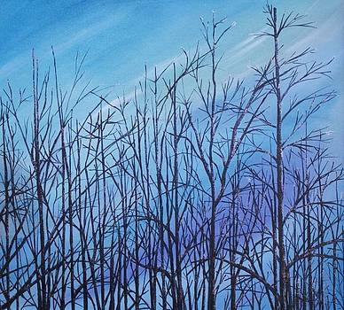 Winter trees against a blue sky by Ellen Canfield