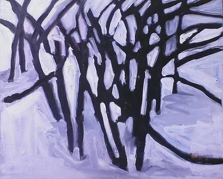 Winter Trees by Kerrie B Wrye