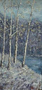 Winter Trees by Mary Henne