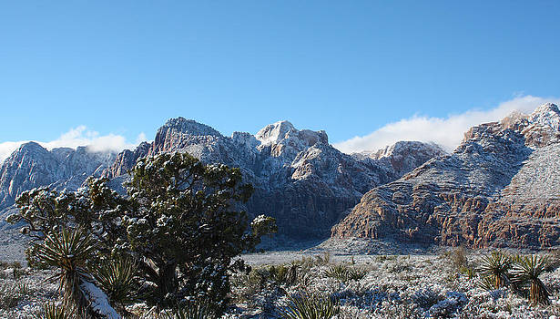 Winter Valley by Dennis Galloway