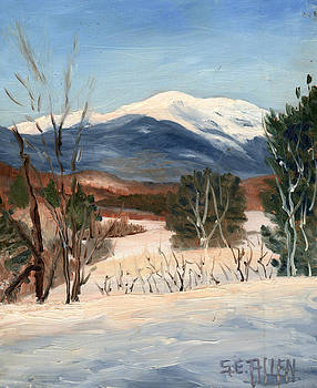Winter View from the Overlook by Sharon E Allen