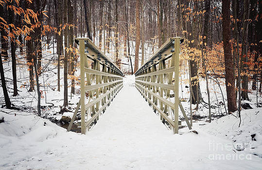 Rachel Barrett - Winter Walk