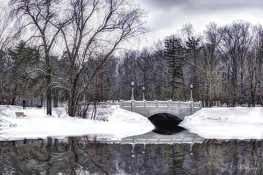Winter Walk by Skip Tribby
