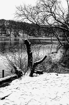 Nick Field - Winter Waterscape