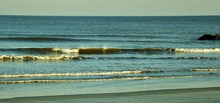 Winter Waves by John Wartman