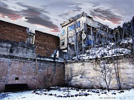 Winter White  by CD Ostenak