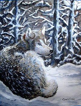 Winter Wolf by Elizabeth Crabtree