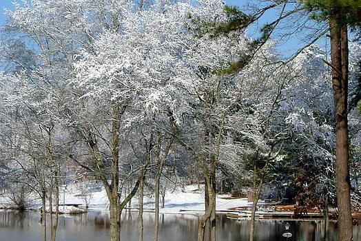 Winter Wonder Land of Mine by Tanya Tanski
