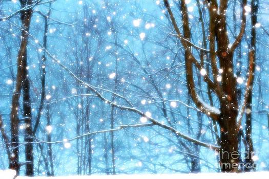 Winter Wonderland by Brenda Schwartz