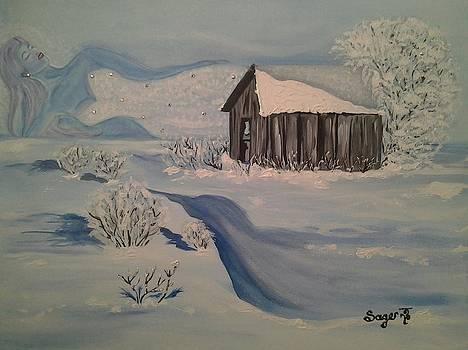 Winter Wonderland by Edwina Sage Washington