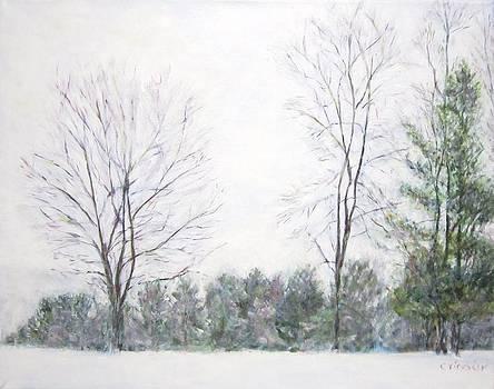 Winter Wonderland USA by Glenda Crigger