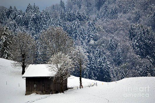 Susanne Van Hulst - Winter Wonderland in Switzerland