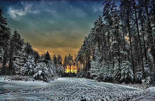 Winter Wonderland by Jeff S PhotoArt