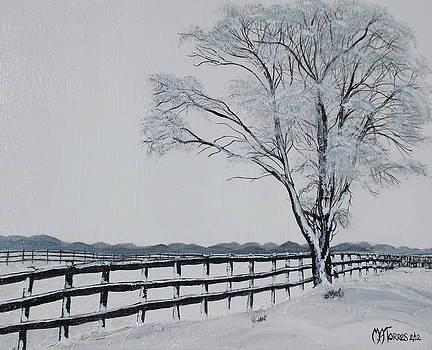 Winter Wonderland by Melissa Torres