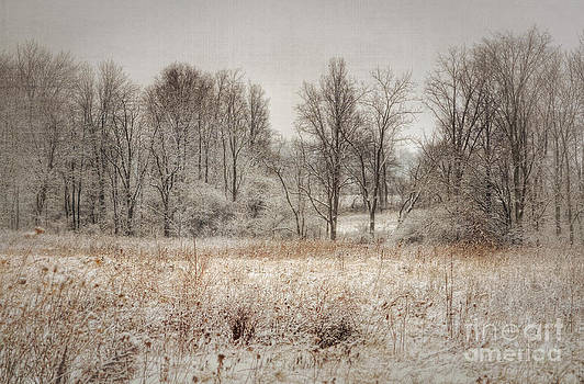 Winter Wonderland by Pamela Baker