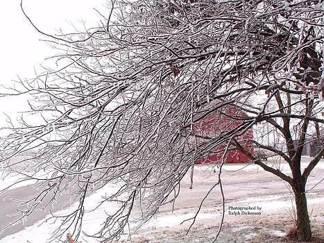 Winter Wonderland by Ralph Dickerson