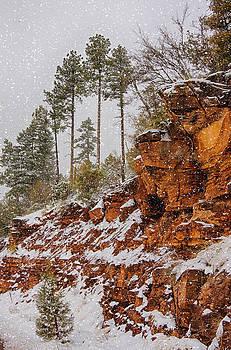 Saija  Lehtonen - Winter Wonderland Southwest Style