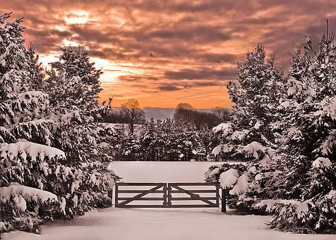 Winter Wonderland by Tanis Crooks