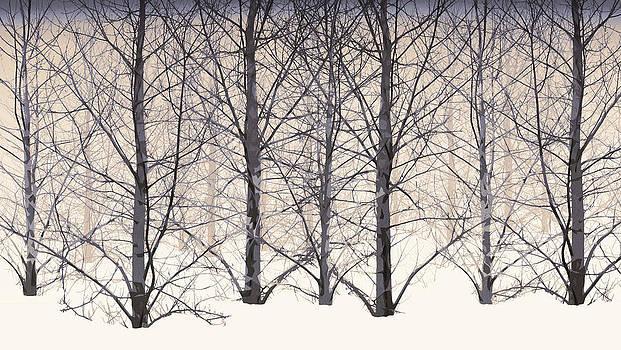Winter woodland in brown by Gillian Dernie
