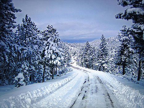 Julie Magers Soulen - Winter Woodland Photo -Country Roads Take Me Home -Mountain Landscape -Nature