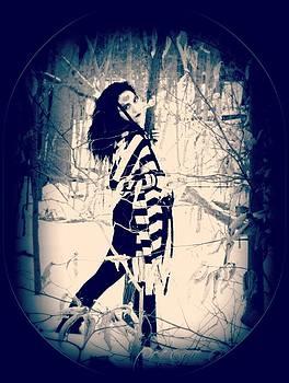 Maryann  DAmico - Winter Woods