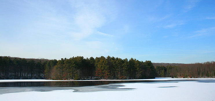 Wintergreen Winterfrost by Stephen Melcher