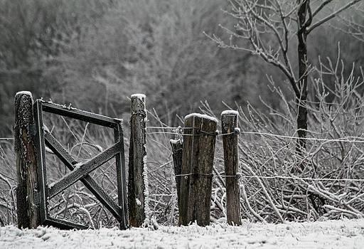 Winterland by Odd Jeppesen