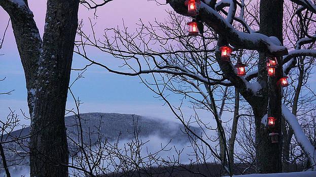Winterlight by Seay Harshaw Delgado