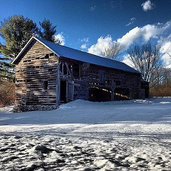 #winterlight#upstatelove by Ziggy Hartfelder