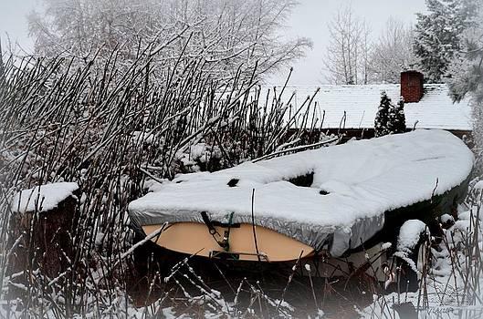 Guy Hoffman - WinterPark - Boat