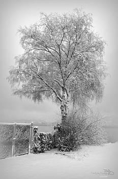 Guy Hoffman - WinterPark05